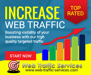 Web Traffic Services - banner 300x250